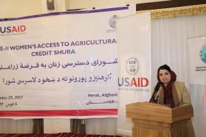 H.E. Ms. Kamila Sidiqi speaks at the Women Agricultural Credit Shura in Herat on 29th Nov. 2017,2