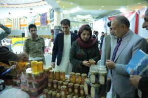 Her Excellency Ms. Kamila Sidiqi surveying local products in Balkh Province on 26th Sept. 2017